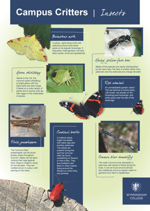 Wc campus critters posters page 2