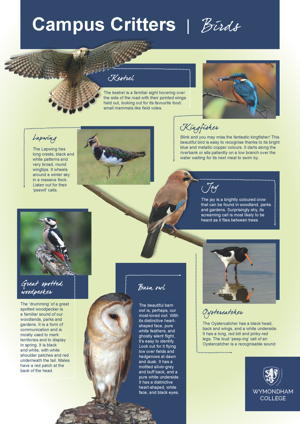 Wc campus critters posters page 3